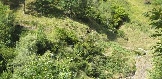 steep stuff
